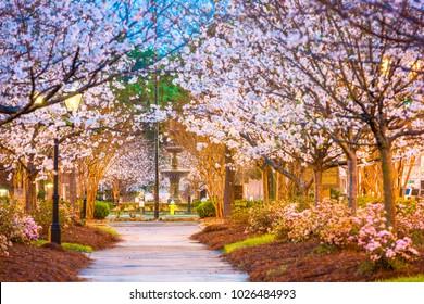 Macon, Georgia, USA downtown square in spring.