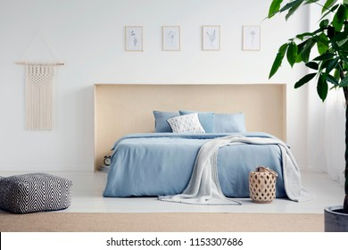 Macrame and simple posters hanging on the wall in real photo of white room interior with king-size bed with pastel blue bedding and carpet on the floor