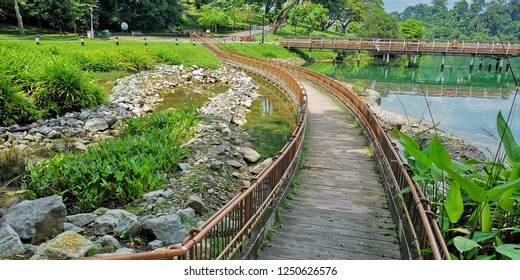 MacRitchie Reservoir Park, Singapore, December 04, 2018: Highlight in the park is a vegetated gravel swale, which is complemented by a submerged boardwalk being initiated by Public Utilities Board.