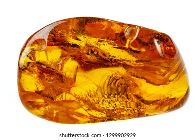 Macro Amber mineral stone with spider on white background close up