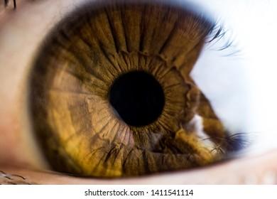 Macro beautiful eye man color