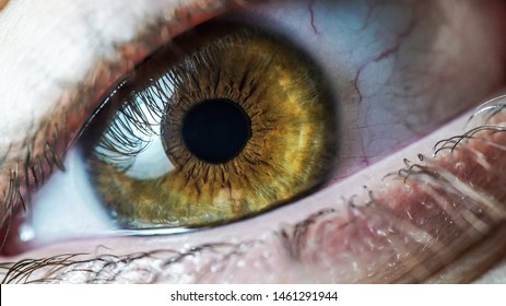 Macro beautiful eye man and woman color