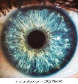 macro blue eyes color