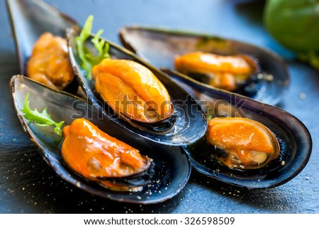 Macro close up of appetizing fresh Steamed sea mussels. Large blue mussels on dark plate