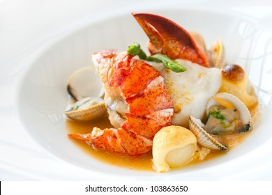Macro close up of seafood dish lobster and shellfish.