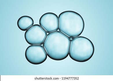 Macro close up of soap bubbles look like scientific image of cell and cell membrane
