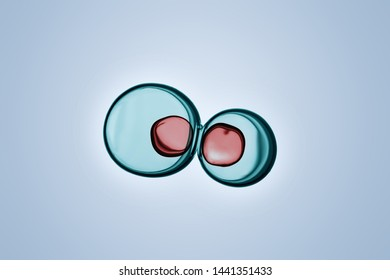 Macro close up of soap bubbles look like scientific image of cells division process, Concept of cell divides into two cells