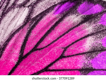 Macro closeup of butterfly wing texture background pattern.