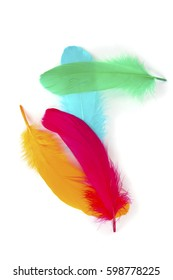 a macro closeup of colorful fluffy red orange green blue bird feathers in abstract composition isolated on white