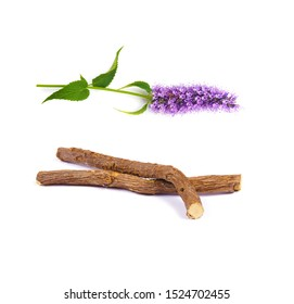 a macro closeup on purple blue aromatic flower cluster bloom of Agastache garden herb and brown licorice liquorice roots sticks isolated on white