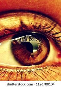 Macro closeup woman eye makeup