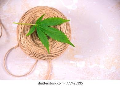 Macro detail of hemp fiber twine and cannabis leaf over white background - marijuana farming concept