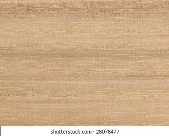 Macro of empress tree grain texture.( also known as Paulownia tomentosa, Princess Tree or Foxglove Tree)