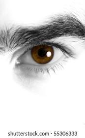Macro eye shot of a young male, high key edition