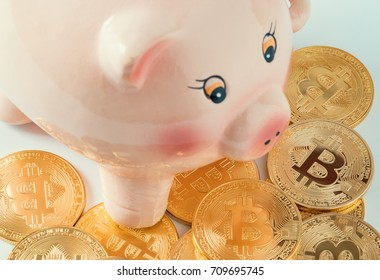 macro group of bitcoins and piggy bank. virtual cryptocurrency saving concept