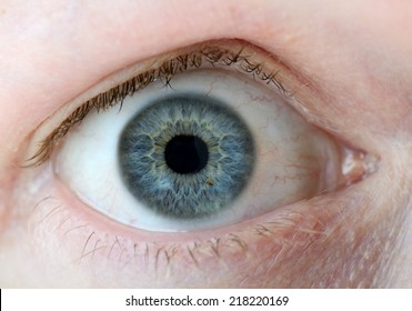 A macro of a human eye