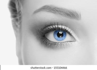 Macro image of beautiful woman blue eye, monochrome