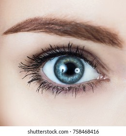 Macro image of blue woman's eye.