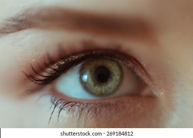 Macro image of female eye 2 closeup