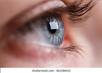 Macro image of human beautiful grey eye