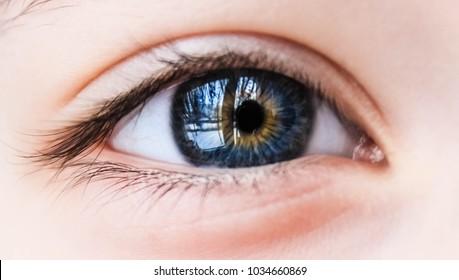 Macro image of a human blue eye