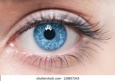 Macro image of human eye - Shutterstock ID 128857243