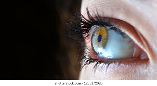 Macro image of human eye on dark background with copy space.