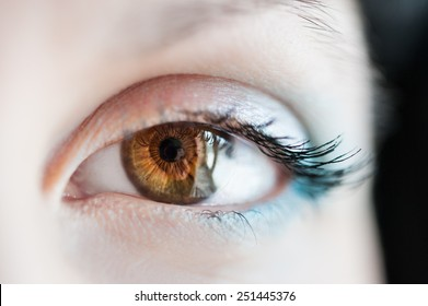 Macro image of human eye. Small depth of field