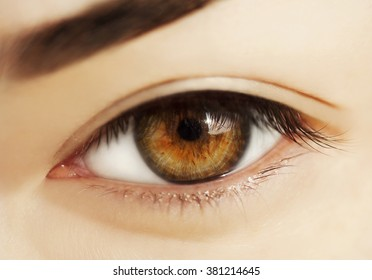 macro natural look woman eye