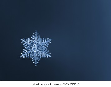 Macro of natural snowflakes on blue background with copy space for your text