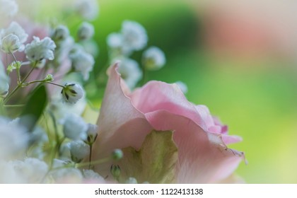 Macro of a part of a wedding bouquet with pink roses