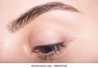 Macro photo of a female eye with make-up eyebrows and lashes .