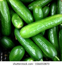 Macro Photo food cucumbers. Texture pattern background green cucumbers. Image fresh green cucumbers