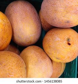 Macro Photo food fruit asian galia melon. Texture background food colorful fruit yellow  galia melons. Image of food product fruit yellow  galia melon