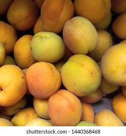 Macro Photo food tropical fruit apricot. Texture background sweet yellow ripe apricots. Image food fruit apricots