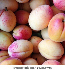 Macro Photo food tropical fruit apricot. Texture background of sweet yellow ripe apricots. Image food fruit apricots