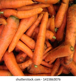 Macro Photo food vegetable carrot. Texture background of fresh large orange carrots. Product Image Vegetable Root Carrot