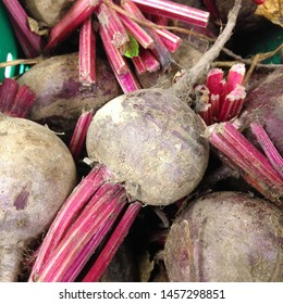 Macro Photo food vegetable root beets. Texture background fresh big red beets. Product Image Vegetable root beet