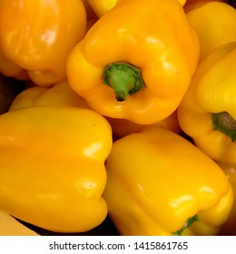 Macro Photo food vegetable yellow bell peppers. Texture background fresh big yellow pepper color. Product Image Vegetable Pepper