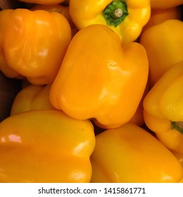 Macro Photo food vegetable yellow peppers. Texture background fresh big yellow pepper color. Product Image Vegetable gold bell Pepper