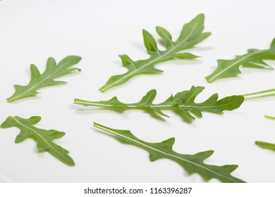 Macro photo of fresh green leaves of italian arugula isolated on white plate. Rucola salad. Organic healthy diet food. Horizontal color photography.
