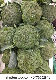 Macro photo green vegetable broccoli. Image green fresh organic broccoli cabbage.