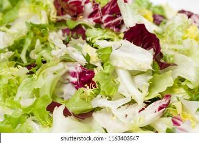 Macro photo of mix of different fresh green salad leaves on plate. Leaves of red and white radicchio, arugula, curled-leaved endive and frisee background. Horizontal color photography.