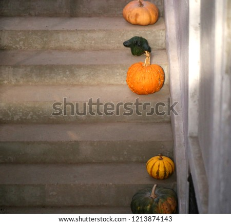 Macro photo of an orange pumpkin on the stairs in a cafe