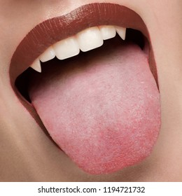 Macro photo of sexy female lips with brown scarlet lipstick. Woman shows her tongue and snow-white teeth with fangs like a vampire. Dentistry, cosmetology, halloween