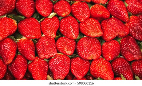 Macro photo of a lot of strawberries in full frame. Food Concept