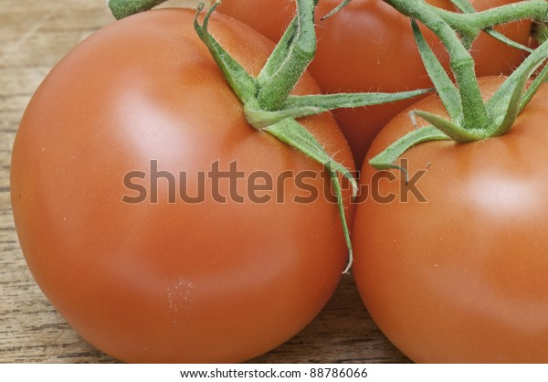 Macro photo of tomatoes on with the vine still attached.It is on a table top.