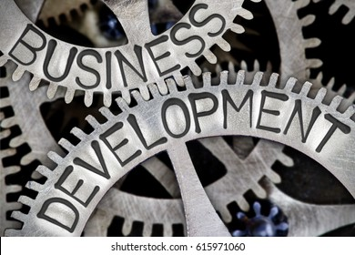 Macro photo of tooth wheel mechanism with BUSINESS DEVELOPMENT concept letters