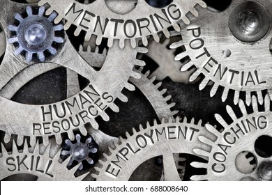 Macro photo of tooth wheel mechanism with HUMAN RESOURCES, MENTORING, POTENTIAL, SKILL, COACHING and EMPLOYMENT concept words