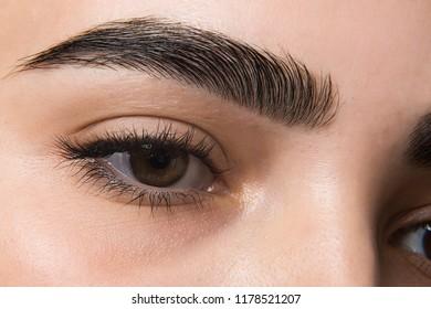 macro photo of a woman's eye, eyelashes and eyebrows